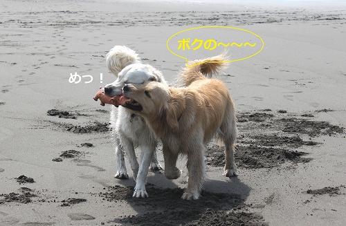 s-IMG_0721.jpg