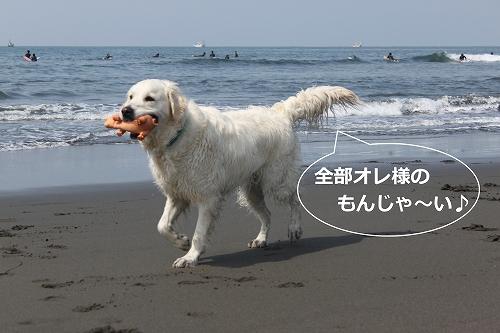 s-IMG_0734.jpg