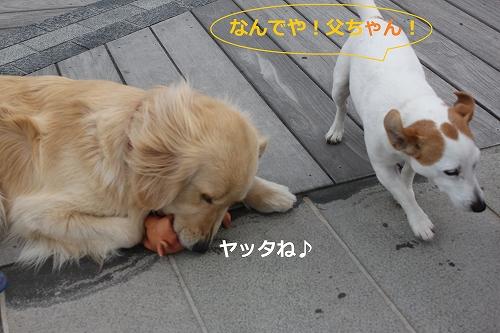 s-IMG_0753.jpg