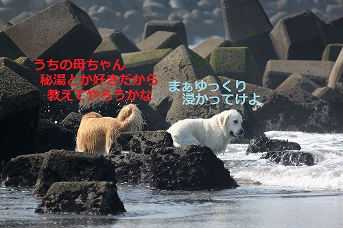 s-IMG_0758.jpg