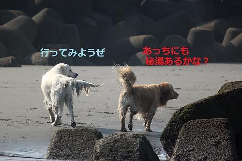 s-IMG_0761.jpg
