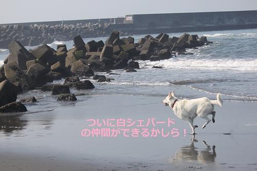 s-IMG_0770_20110701165800.jpg