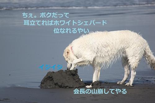 s-IMG_0789.jpg