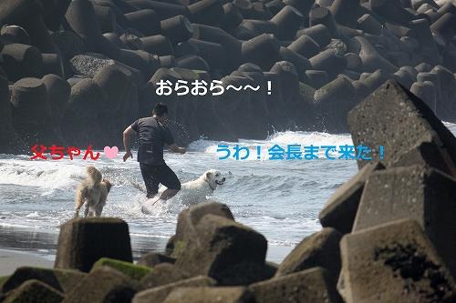 s-IMG_0806_20110629223136.jpg