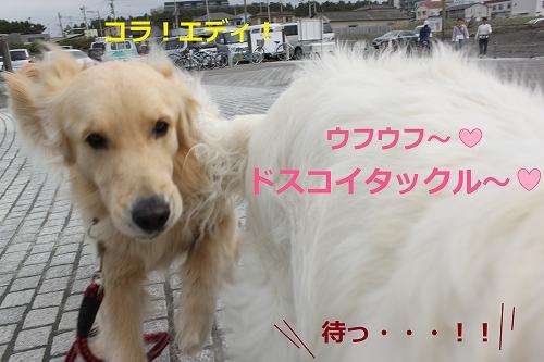 s-IMG_0821_20110505215014.jpg