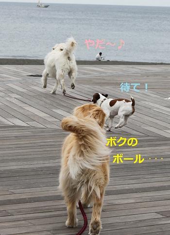 s-IMG_0824_20110505215154.jpg
