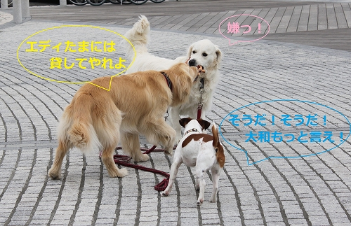 s-IMG_0825_20110505215153.jpg
