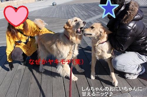 s-IMG_0899_20110127154010.jpg