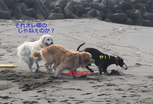 s-IMG_0920.jpg
