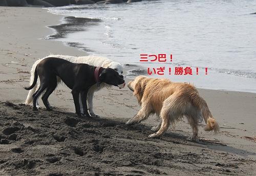 s-IMG_0927_20110704215338.jpg