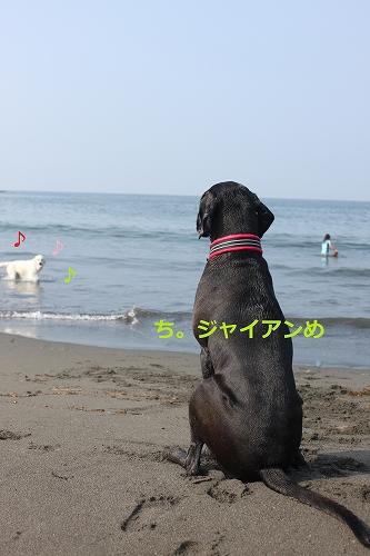 s-IMG_0931_20110704215601.jpg