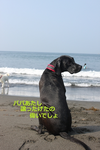 s-IMG_0932_20110704215600.jpg