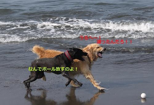 s-IMG_0933.jpg