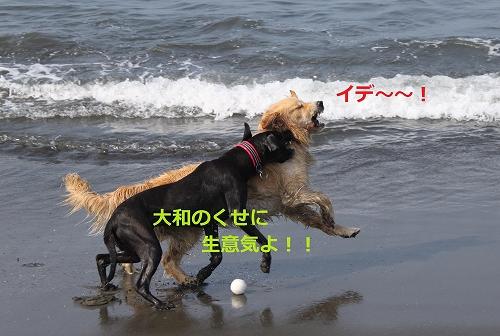 s-IMG_0934_20110704215558.jpg