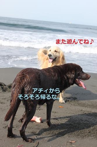 s-IMG_0953.jpg