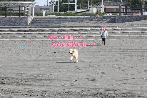 s-IMG_0963_20110707110249.jpg