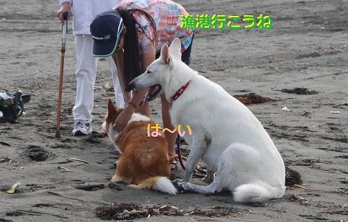 s-IMG_1009_20110707110632.jpg