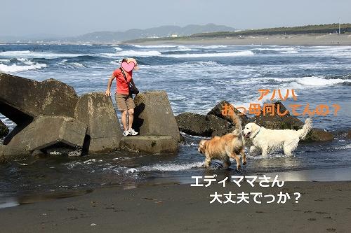 s-IMG_1099_20110514213405.jpg