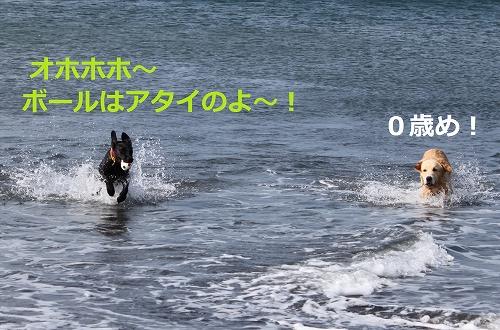 s-IMG_1155.jpg