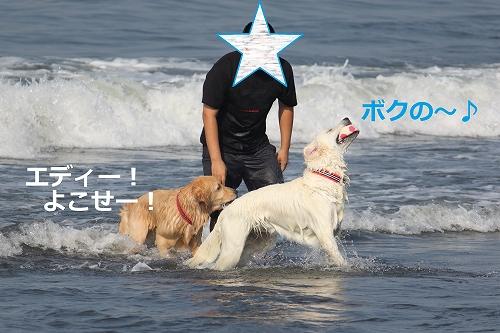 s-IMG_1362_20110810220330.jpg
