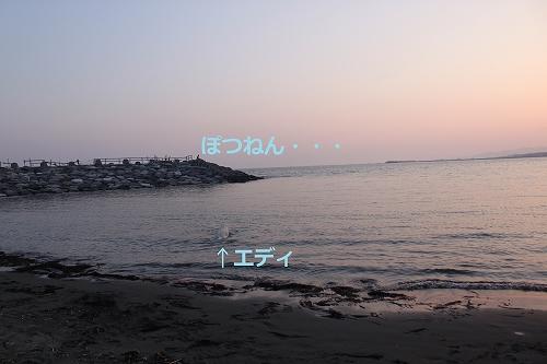 s-IMG_1365.jpg