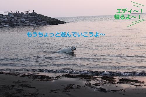 s-IMG_1366_20110519222845.jpg