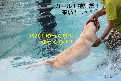 s-IMG_1536_20110818164937.jpg