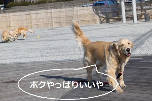 s-IMG_1680.jpg
