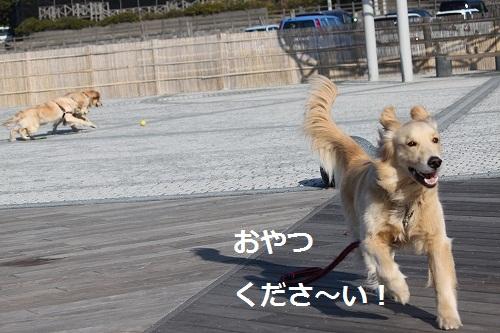 s-IMG_1681.jpg