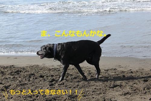 s-IMG_1732.jpg