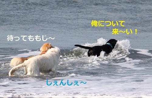 s-IMG_1913_20110908213626.jpg
