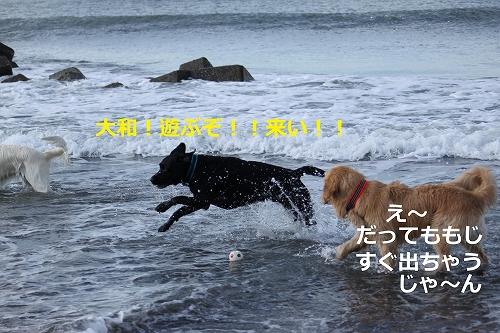 s-IMG_1928_20110908132006.jpg