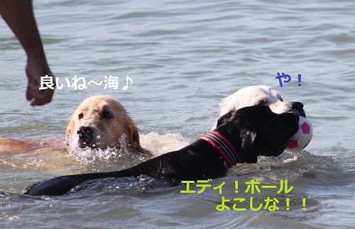 s-IMG_2097.jpg