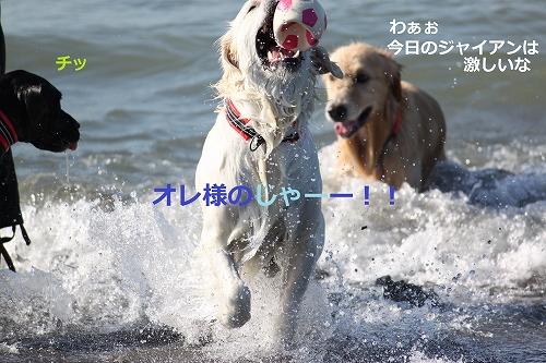s-IMG_2102_20110916214845.jpg