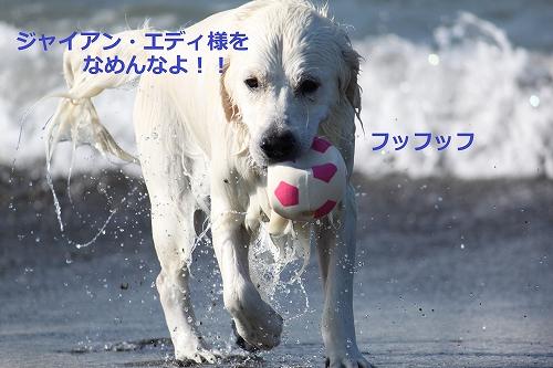 s-IMG_2105_20110916214844.jpg
