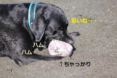 s-IMG_2135_20110916215118.jpg