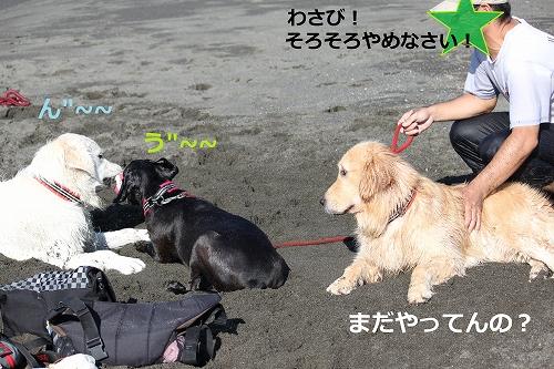 s-IMG_2156.jpg