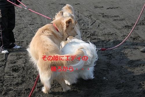 s-IMG_2189.jpg