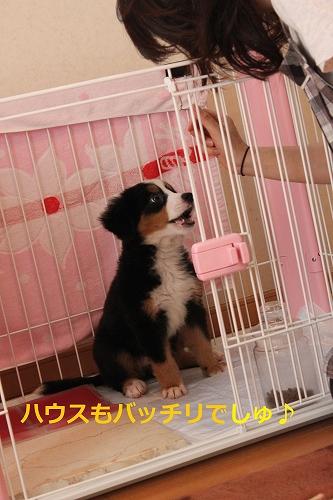 s-IMG_2206_20110917154133.jpg