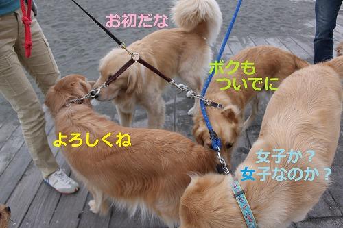 s-IMG_2360.jpg