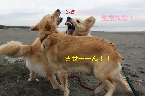 s-IMG_2515.jpg