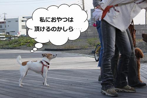 s-IMG_9601.jpg