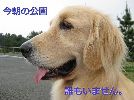 s-IMG_9782.jpg