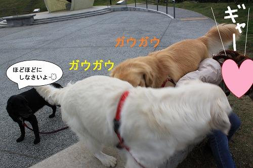 s-IMG_9821.jpg