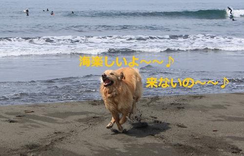 s-IMG_9824.jpg