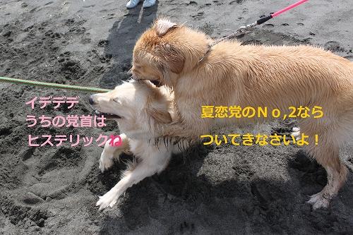 s-IMG_9826.jpg
