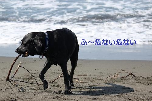 s-IMG_9902.jpg