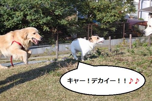 s-IMG_9944.jpg