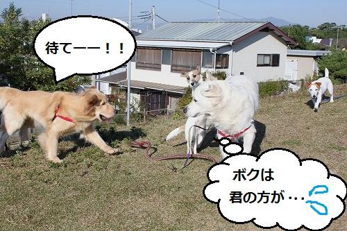 s-IMG_9946.jpg