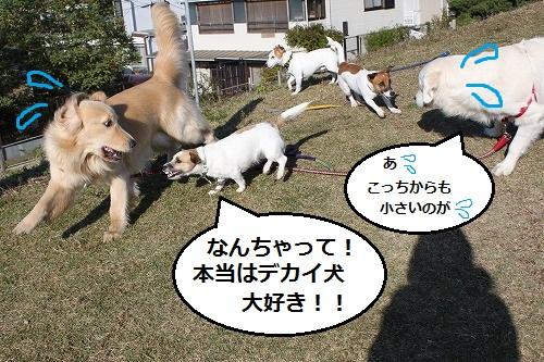 s-IMG_9948.jpg